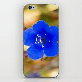 Desert Bluebell Alternate Perspective iPhone Skin