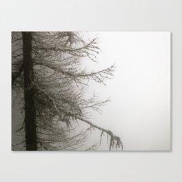 In a cloud  Canvas Print