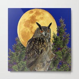 NIGHT OWL WITH FULL MOON Metal Print