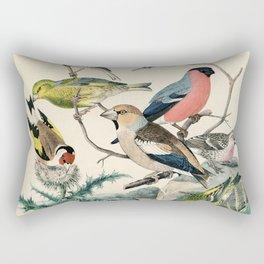 19th century bird illustration from Das Buch der Welt, 1862 Rectangular Pillow