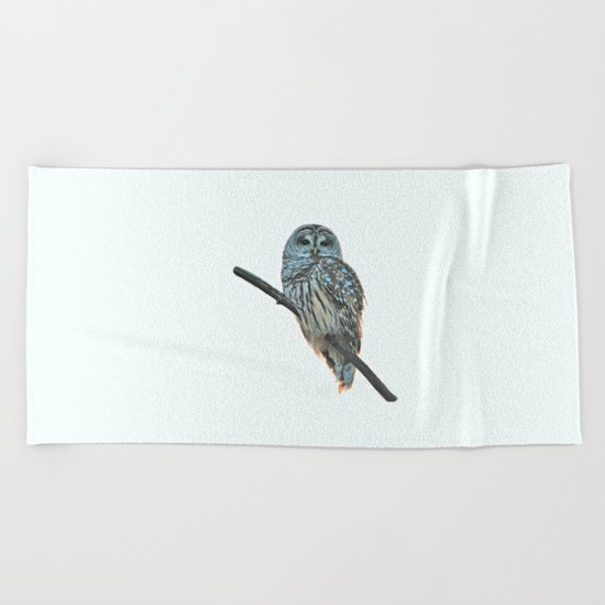 Barred Owl at Sunset Beach Towel