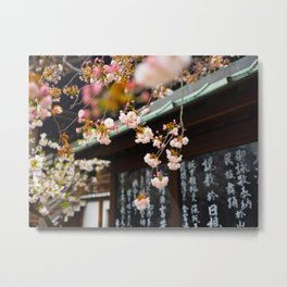 Japanese Calligraphy Shinto Shine With Pretty Cherry Blossoms Ancient Feudal Japanese Art & Culture Metal Print