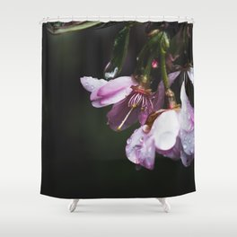 Rain Blossom Shower Curtain