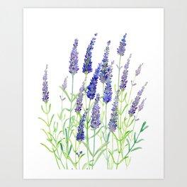 Watercolor Lavender Bouquet Art Print