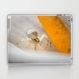 Looking Down Laptop & iPad Skin