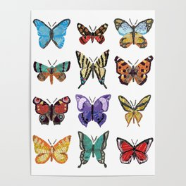 Butterflies (Papillons) Poster