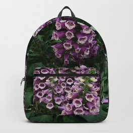 Enchantment Backpack