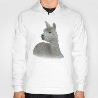 alpaca Hoodies featuring White Alpaca by Deborah Janke