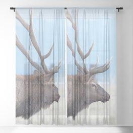 Watercolor Elk Bull 47, Visitor Sheer Curtain