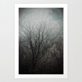 Winter Raven Art Print