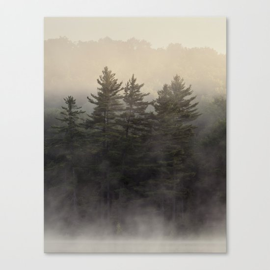 the coming light Canvas Print