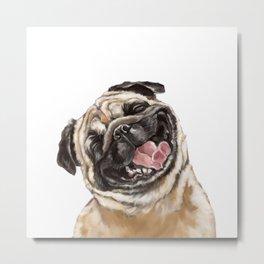 Happy Laughing Pug Metal Print