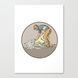 Farmworker Shearing Sheep Circle Etching Canvas Print
