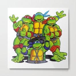 Teenage Mutant - Ninja Turtle Metal Print