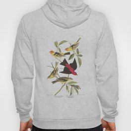 Louisiana Taneger and Scarlet Taneger - Vintage Illustration Hoody