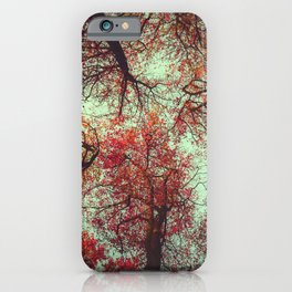 scarlet tree tops iPhone Case