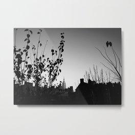 Urban Garden 1 Metal Print