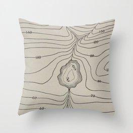 Lake Valley Mountain Throw Pillow