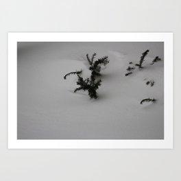Quicksand Art Print