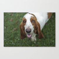 the hound Canvas Prints featuring Hound by RaviusKiedn