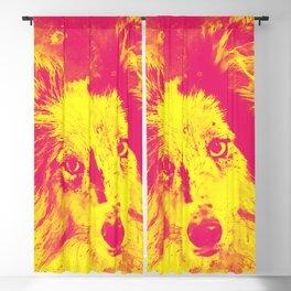 border collie dog 5 portrait wsyp Blackout Curtain