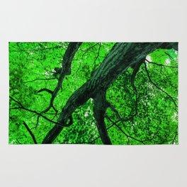 Emerald Leafage Rug