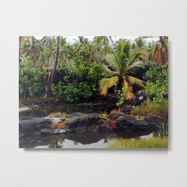 Hawaiian Queen's Bath Metal Print