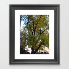 AMAZING TREE Framed Art Print