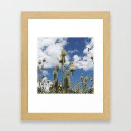 Prickley Framed Art Print