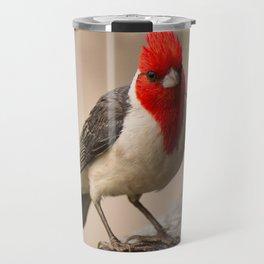 Red Crested Cardinal Travel Mug