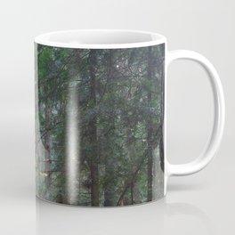 Autumn In The Redwoods Coffee Mug