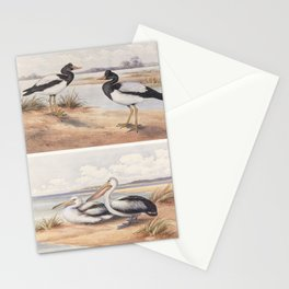 Neville W. Cayley - What Bird Is That? (1931) - Magpie Goose and Australian Pelican Stationery Cards