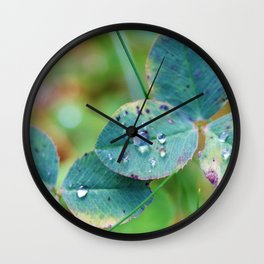 Clover leaves with rain drops Wall Clock