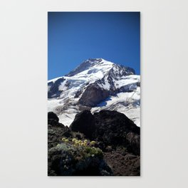 (#100) Mountain Flowers Canvas Print