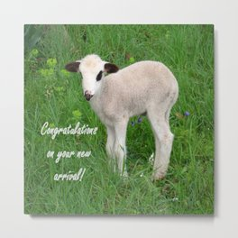Congratulations On Your New Arrival Metal Print