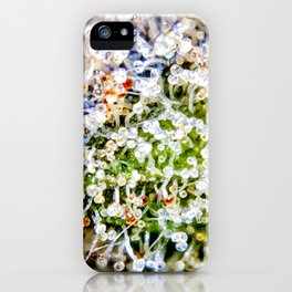 Diamond OG Kush Strain Top Shelf Indoor Hydro Trichomes Close Up View iPhone Case