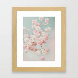 Gypsophila pink blush ll Framed Art Print