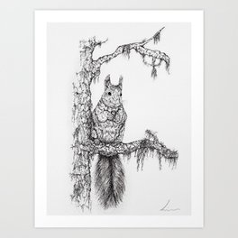 Deep in the wood (Squirrel on a branch) Art Print