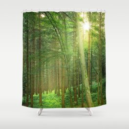 Forest In Morning Light Shower Curtain