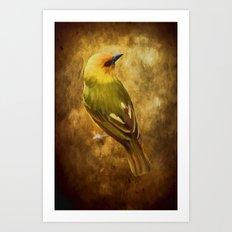 Avian Art Art Print