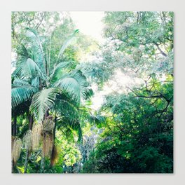 Lost in the jungle bright green tropical palm tree forest photography Canvas Print