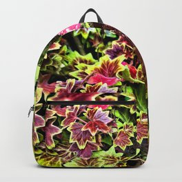 Painted Geraniums Backpack