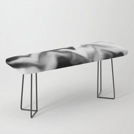 Black and White Gradient Abstract Wavy Chevron Gray Mountain Scenic Pattern Design Minimalistic Bench