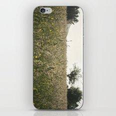 paisaje iPhone & iPod Skin