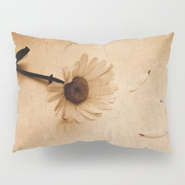 Discarded Pillow Sham