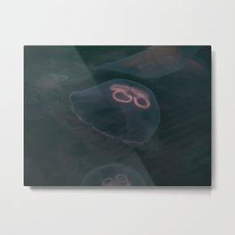 Moon Jellyfish. Metal Print