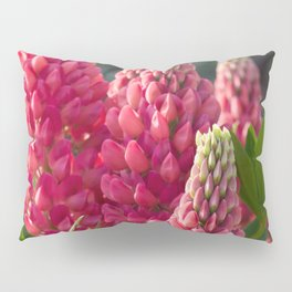 Pink flower towers (small-flowered lupin) Pillow Sham