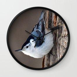 Upside Down Nuthatch Wall Clock