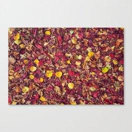 Autumn Colors Fall Leaves  Canvas Print