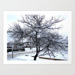 Ice Storm Tree Art Print